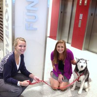 Nestle Purina Internship